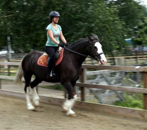 Adult rider in the riding arena