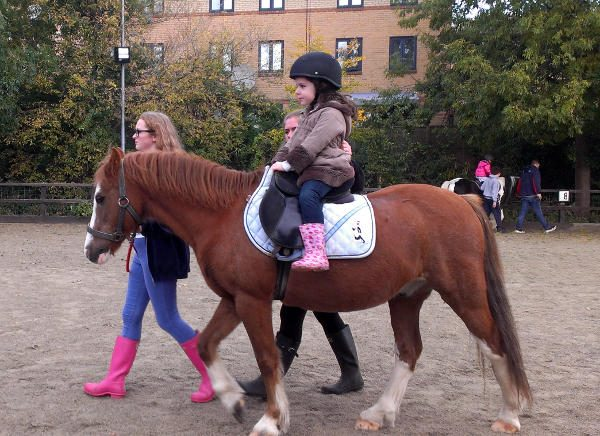 Children riding with attendants in the arena