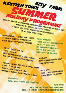 Summer poster of activities