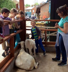 children meet the goats
