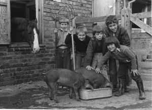 Young Farmers in the 1970s