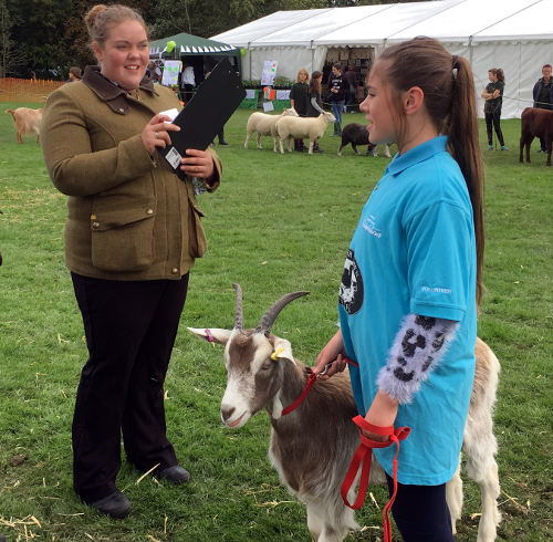Young farmer and goat win