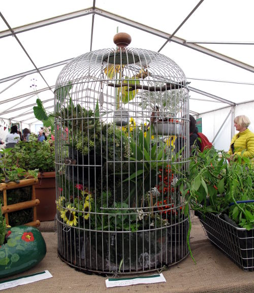Bird cage plant container