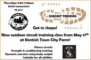 Circuit Training flyer