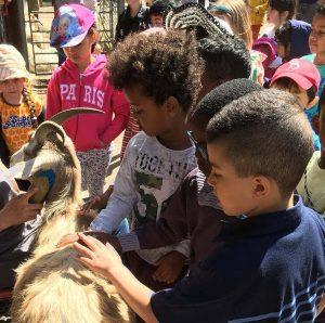 School children with goats