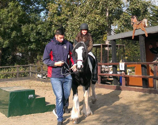 Weekend pony ride