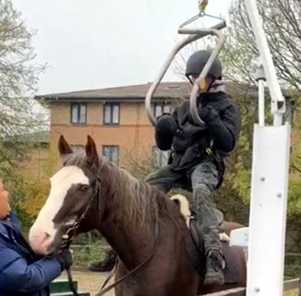 Horse and rider testing hoist
