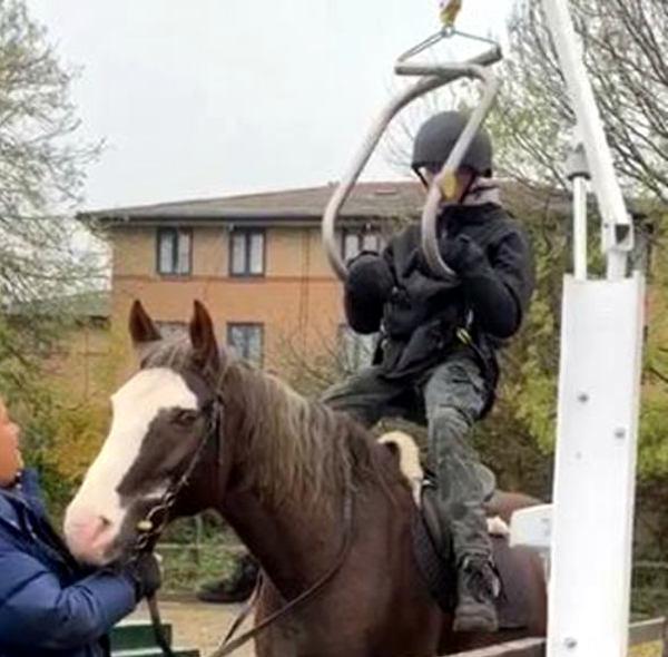 Horse and rider testing hoist