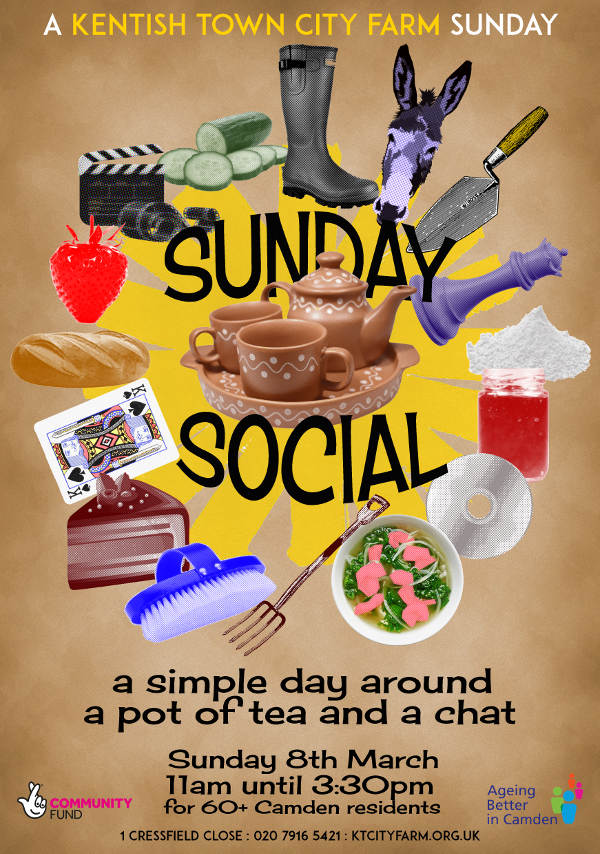 Sunday Social sixty plus activities