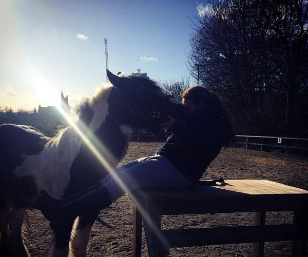 horse and rider friends