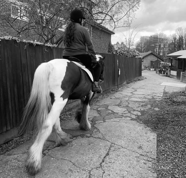 Pony Club rider