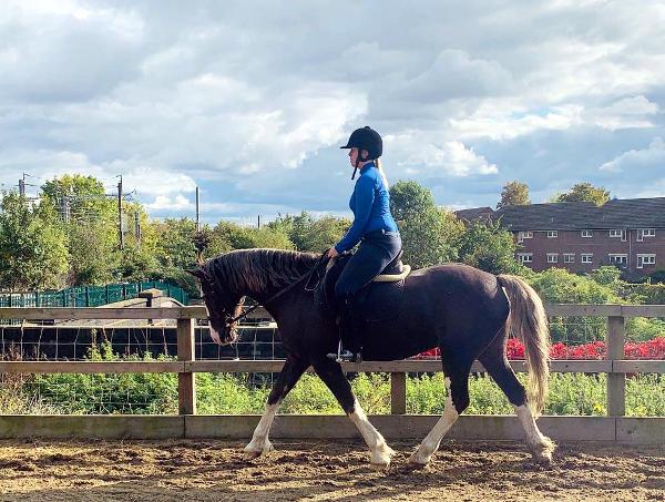 Pony Club riding skills