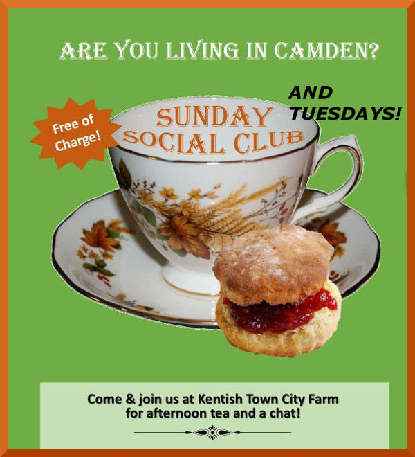 Poster 60 plus  Sunday and Tuesday Afternoon Tea at the Farm