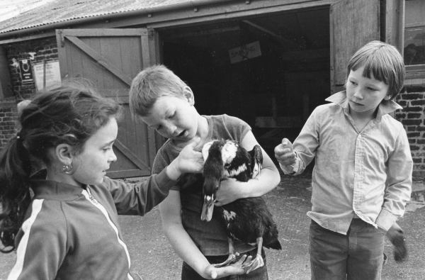 Kentish Town City Farm Young Farmers from the 1970s