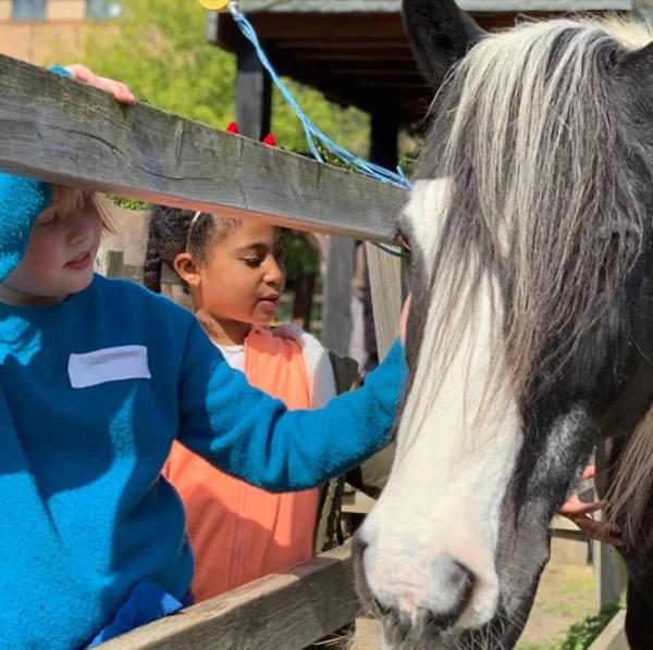 Playscheme children meet horse Murphy