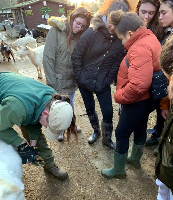 Students watch as goat hoofs are checked
